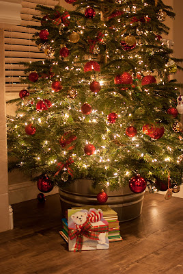 One Christmas Bear Book Review Book In Front of Christmas Tree #OneChristmasBear #ChristmasBook #ChristmasTraditions