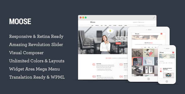 Multipurpose Responsive WordPress Theme