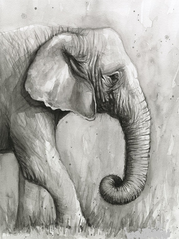 Black And White Elephant Paintings