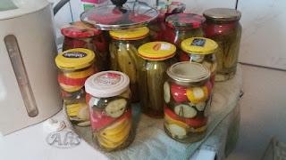 papryka konserwowa czerwona zielona żółta cukinia ogórki