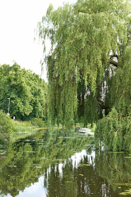 River boat trips on the River Ancholme in Brigg have restarted in 2016 - picture six  on Nigel Fisher's Brigg Blog, image taken by Ken Harrison