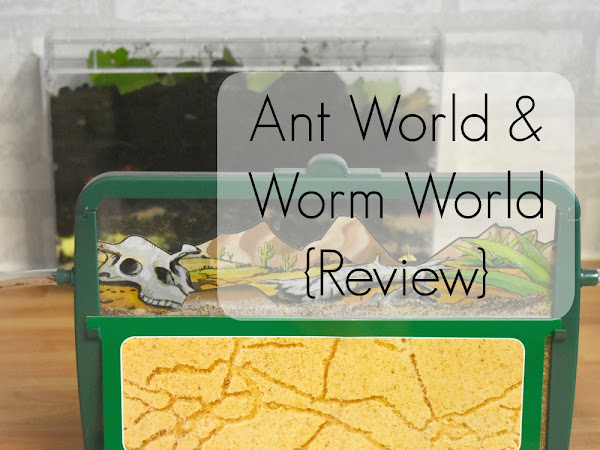 Ant World & Worm World {Review}
