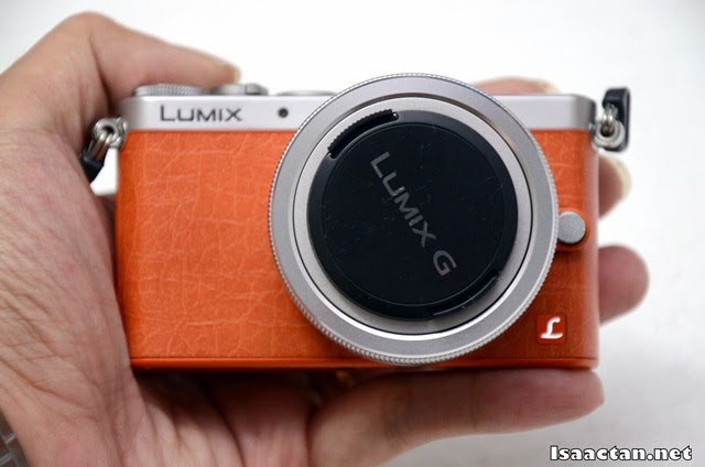 The Panasonic Lumix GM1 fits perfectly in the palms of my hand