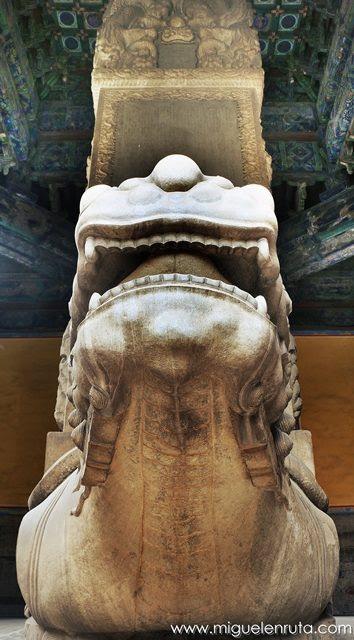 Tortugas-estelas-Templo-Confucio