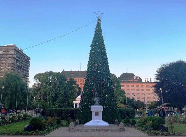 Osorno: árbol de navidad fue instalado en plaza de armas