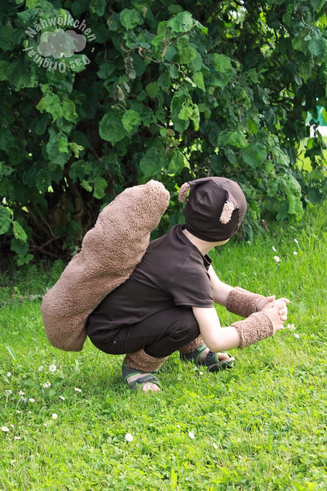 Eichhornchen buch