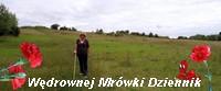 https://pogadajmyopeerelu.wordpress.com/2019/01/20/zimowe-pstryk-pstryk/
