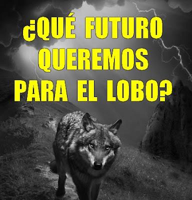 http://accionlobo.blogspot.com.es/2017/05/que-futuro-queremos-para-el-lobo.html?m=1