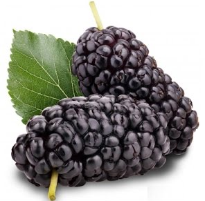 काले सहतूत (Black Berries)