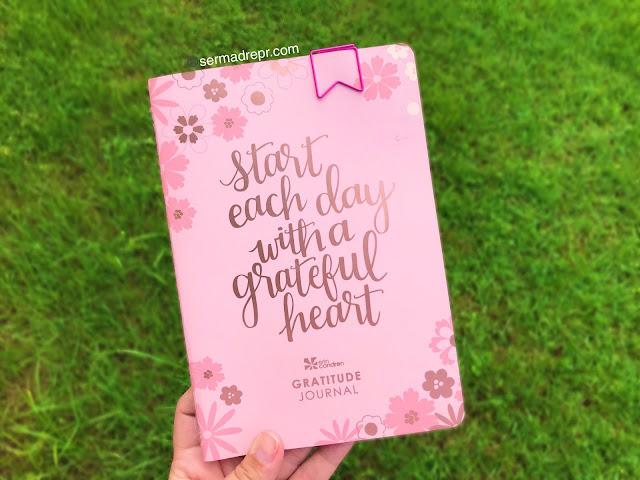diario de la gratitud erin condren