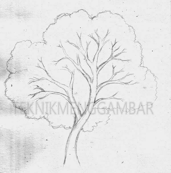 Sketsa Gambar Pohon 3 Dimensi Gambar Mewarnai