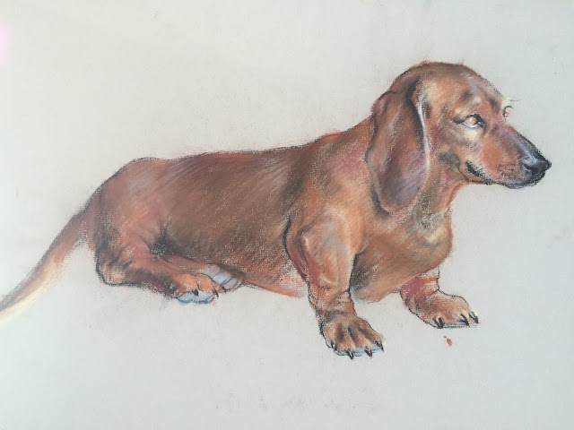 Dog image, Dachshund image by Francis Quirk