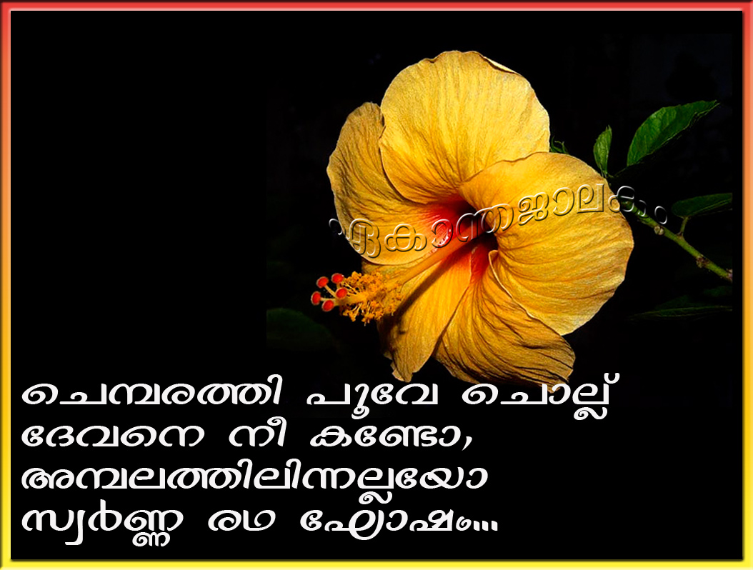 Lovely Quotes For You Malayalam Song Chembarathi Poove Chollu