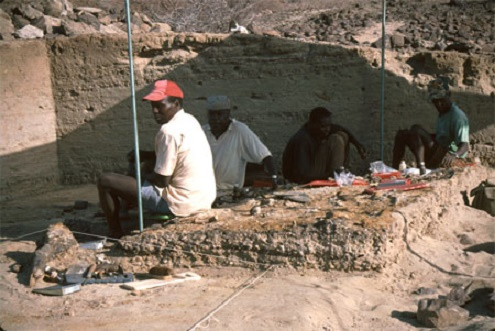 When ancient fossil DNA isn't available, ancient glycans may help trace human evolution