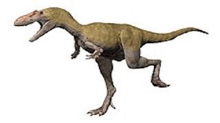 Albertosaurus Resimleri