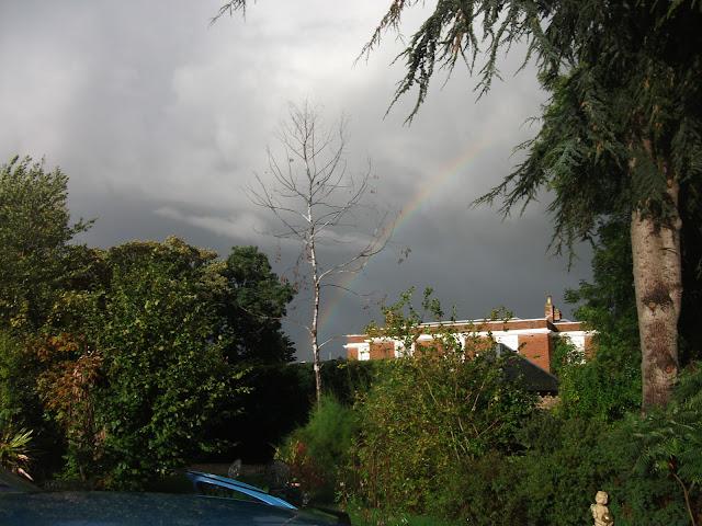 Olly's Rainbow