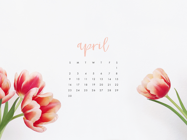 The Best Of April 2018