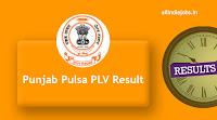 Punjab Pulsa PLV Result