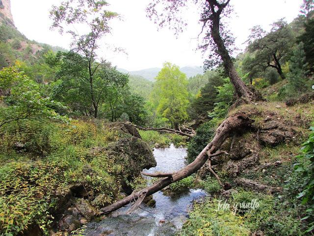 Riópar y río Mundo paisaje