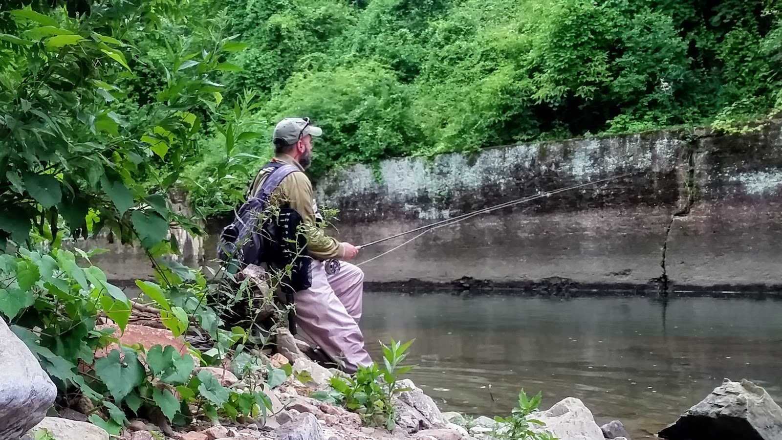 Sick days fishing july 6 2017 a good day not to wear for Pa fish for free days 2017