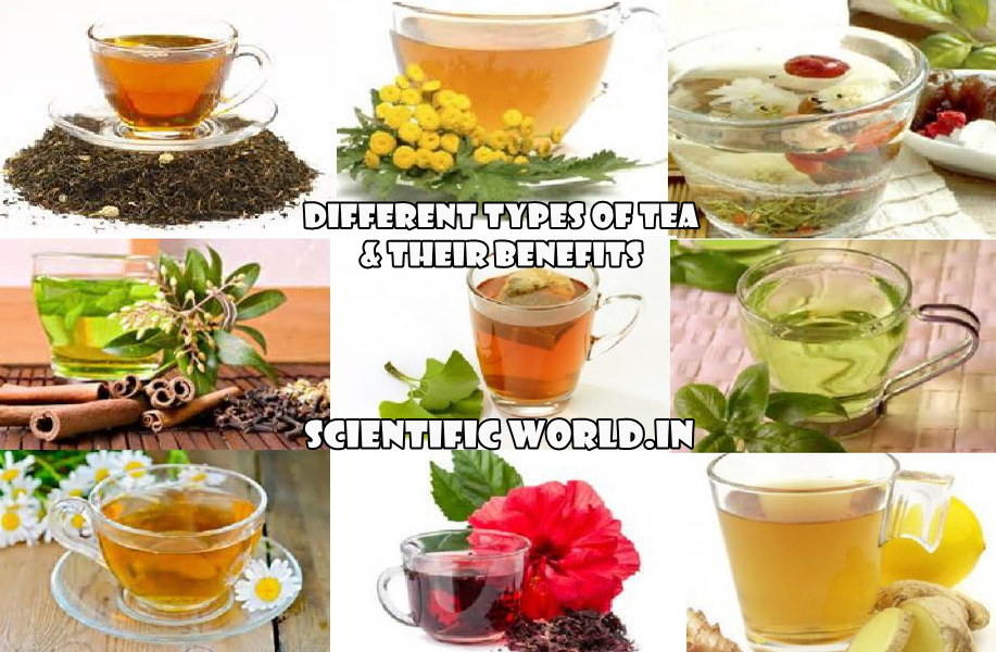 Different types of Tea in India in Hindi