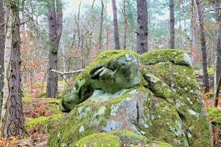 Le Dromadaire, Gorges d'Apremont, Fontainebleau