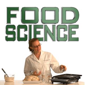 Pertanian Dan Teknik Ilmu Pangan Informasi Jabatan Karir