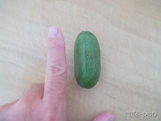 指型アボガド