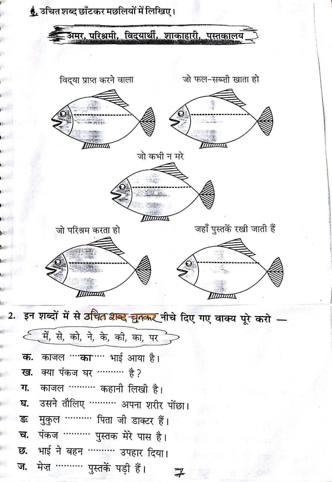 Grammar worksheets for grade 3 icse