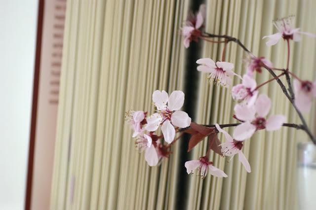 Bücherliebe Kirschblüten www.nanawhatelse.at