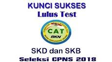 Tips dan Kunci Sukses Lulus Test CAT SKD dan SKB CPNS 2018