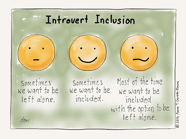 What makes an introvert interesting?