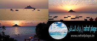 رفراف الشاطئ : لماذا سميت  جزيرة قمنارية أو بيلو أكتشف هذا اللغز