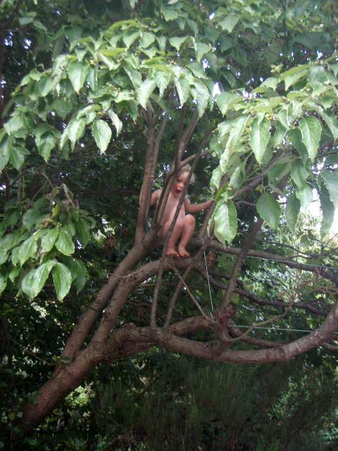 Tree Naked 99