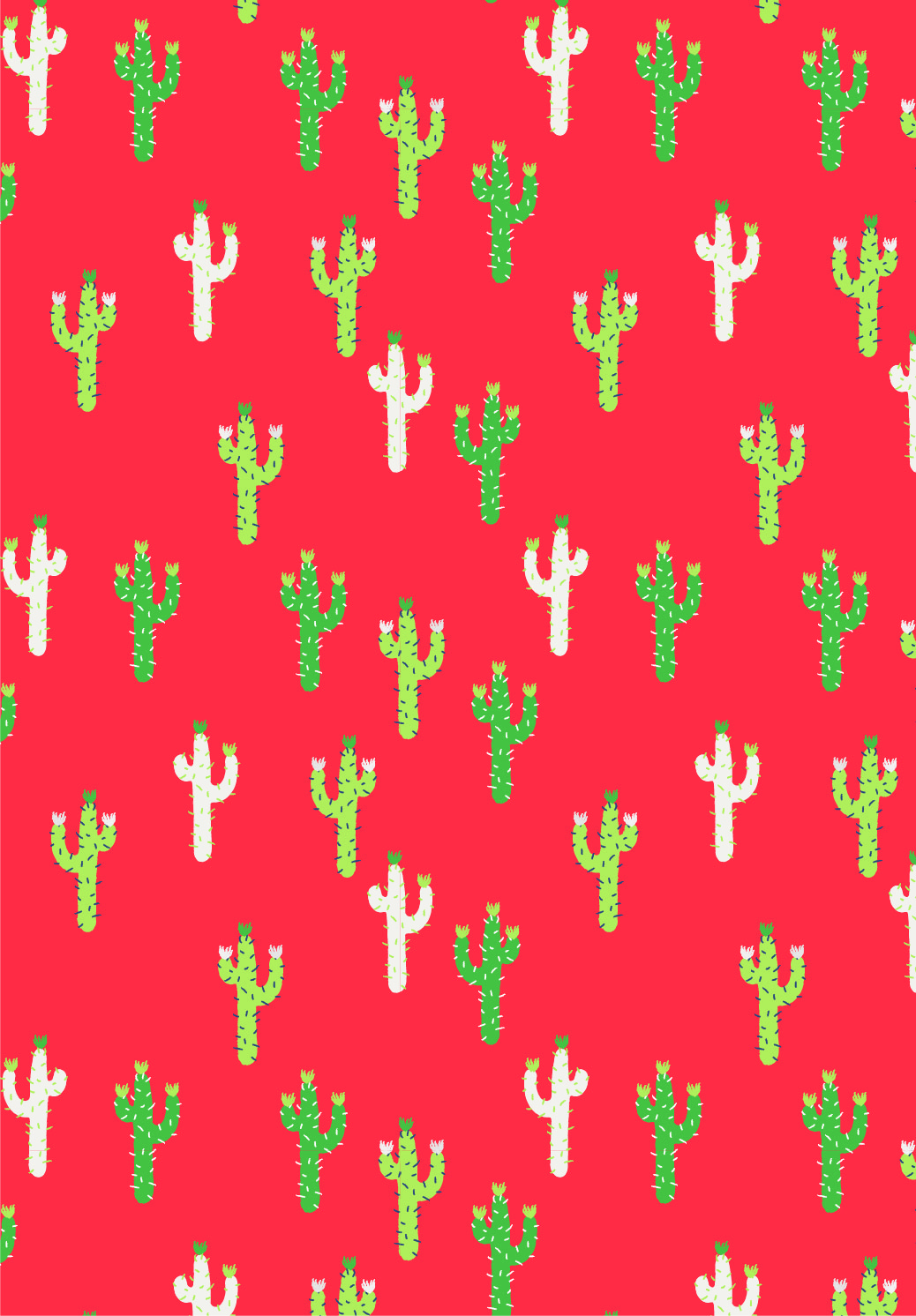Emily Kiddy: Scarlet Cactus