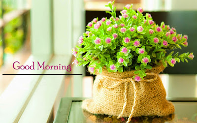 Best-Morning-Quote-Flowers-image