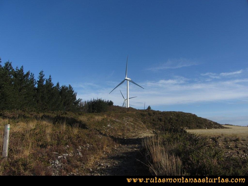 Ruta Sierra Bufarán, picos Degollada o Grande y Cotera: Pista de los molinos del parque eólico
