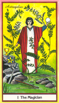 The Hedge Wife The Herbal Tarot 1 The Magician Astragalus