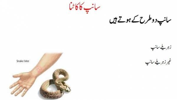 Snakebite types in urdu