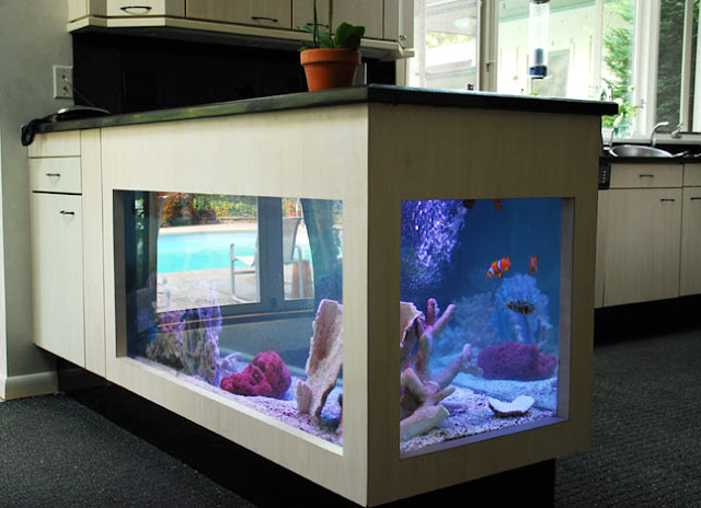 Aquarium? Think Again. 20 Unusual Places In Your Home For Fish Tanks