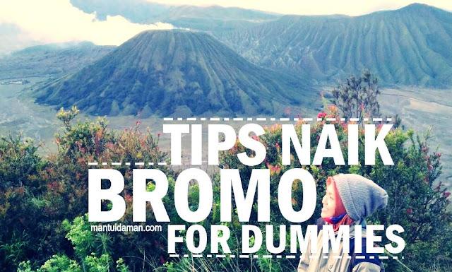tips naik bromo for dummies