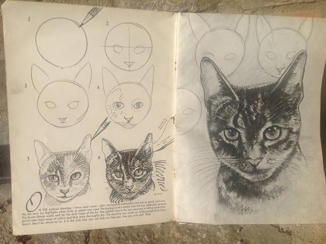 tutorial-per-disegnare-gatto