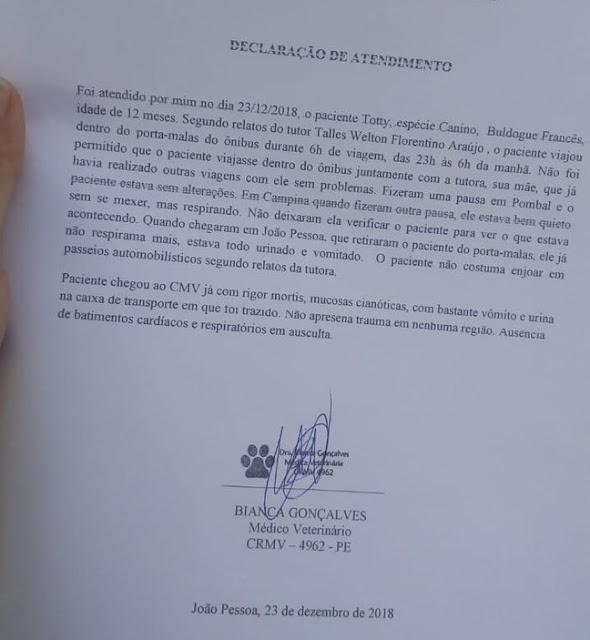 VÍDEO: Passageiro denuncia empresa Guanabara por morte de cachorro