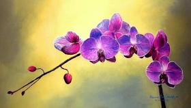 Lukisan Bunga Anggrek Sederhana