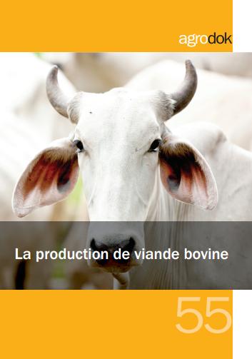 La production de viande bovine - WWW.VETBOOKSTORE.COM