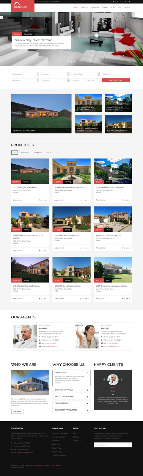 Best real estate website template