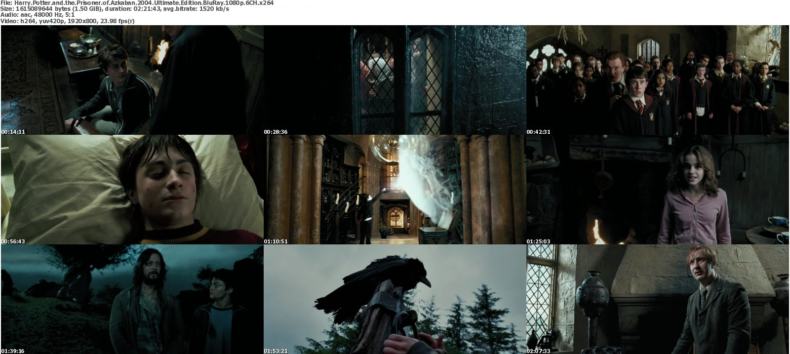 Harry Potter Extended Edition