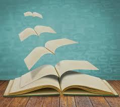 Setengah Buku
