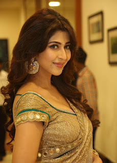 Actress Sonarika Bhadoria Stills in Saree at Eedo Rakam Aado Rakam Movie Audio Launch  252860