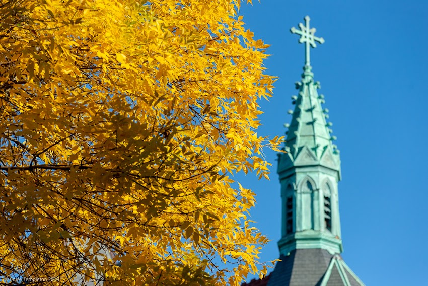 Portland, Maine USA October 2018 photo by Corey Templeton. Yellow leaves near the Maine Irish Heritage Center (formerly St. Dominic's Church) in the West End.